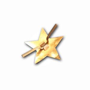 Gwiazda zsrr