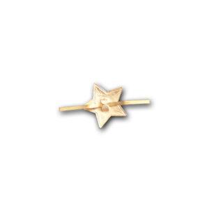 Gwiazda zsrr b1