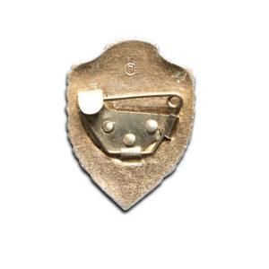 odznaka ZSRR 22 a